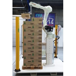 RFA RS020N Robot Palletising System for 2 lines